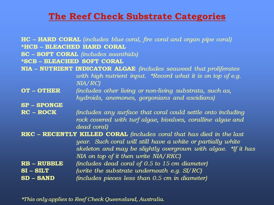 The Reef Check Substrate Categories