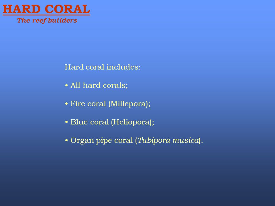 HARD CORAL Hard coral includes: All hard corals;