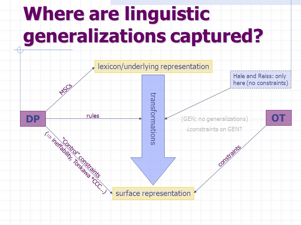 Where are linguistic generalizations captured