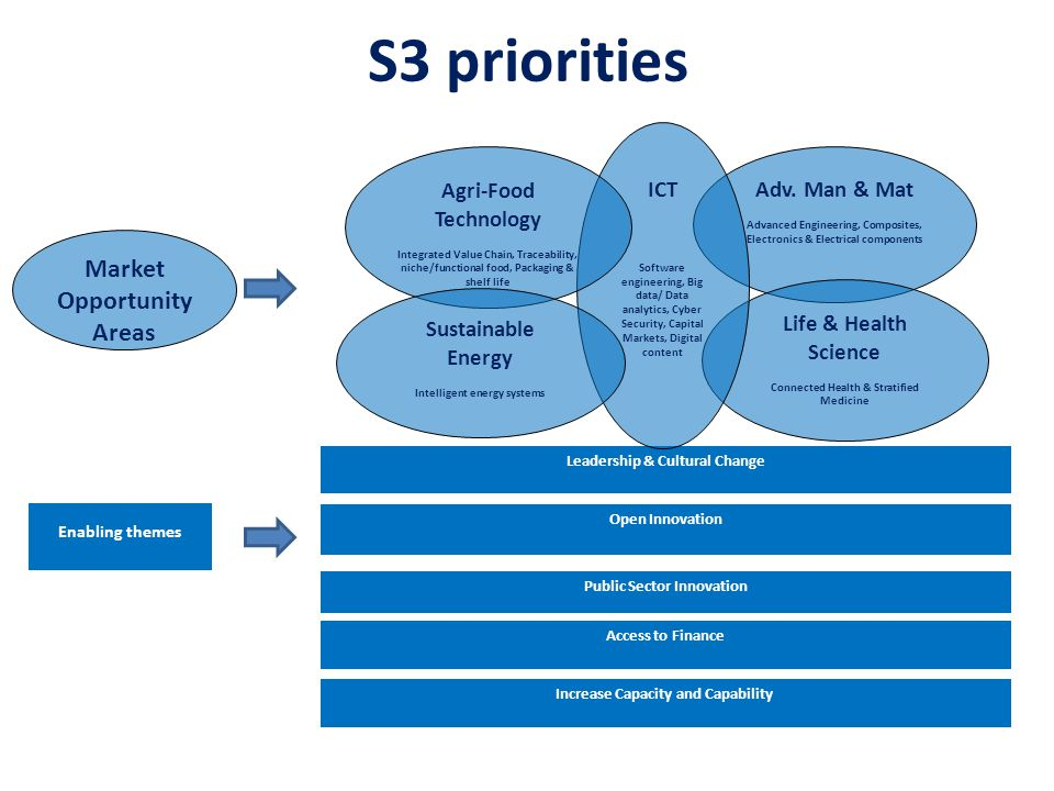 S3 priorities Market Opportunity Areas ICT Agri-Food Technology