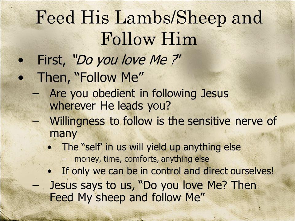 Feed His Lambs/Sheep and Follow Him