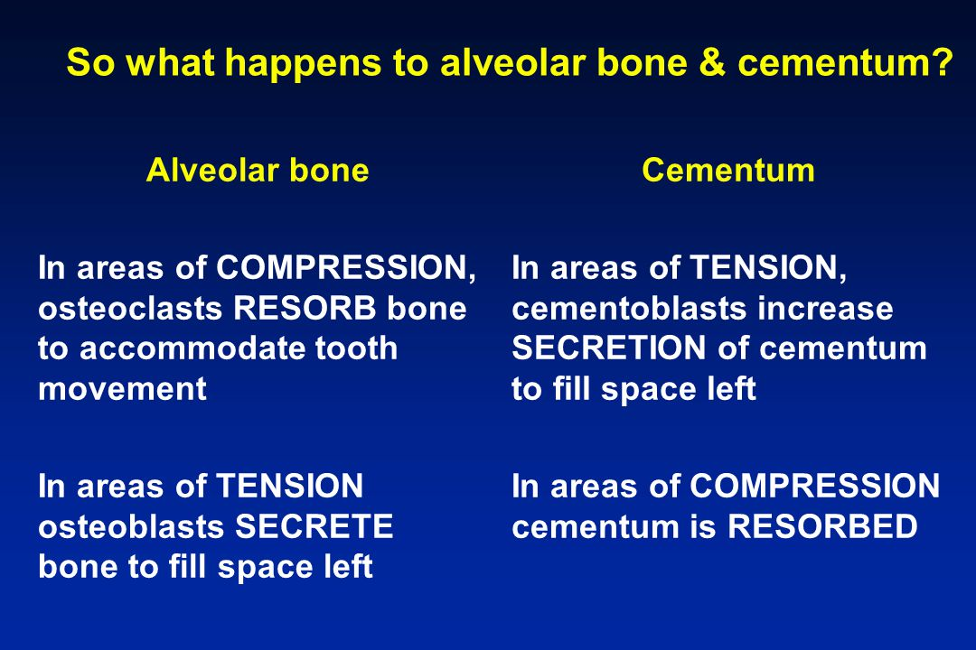 So what happens to alveolar bone & cementum