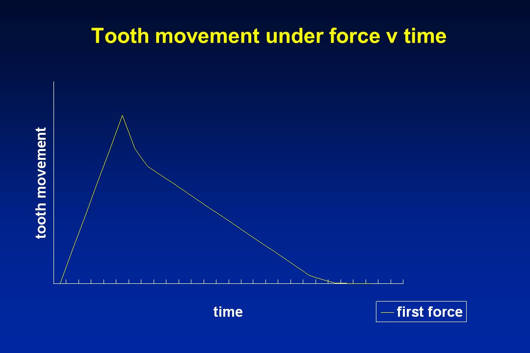 Tooth movement under force v time