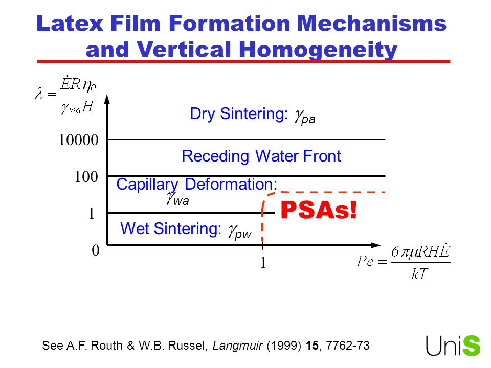 Latex Film Formation Mechanisms and Vertical Homogeneity