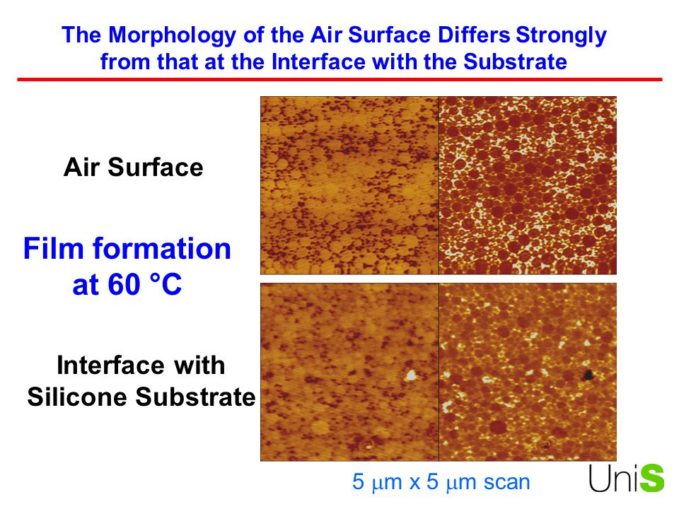 Interface with Silicone Substrate