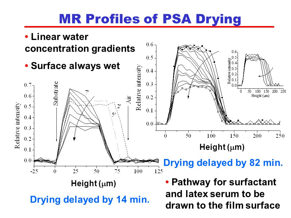 MR Profiles of PSA Drying