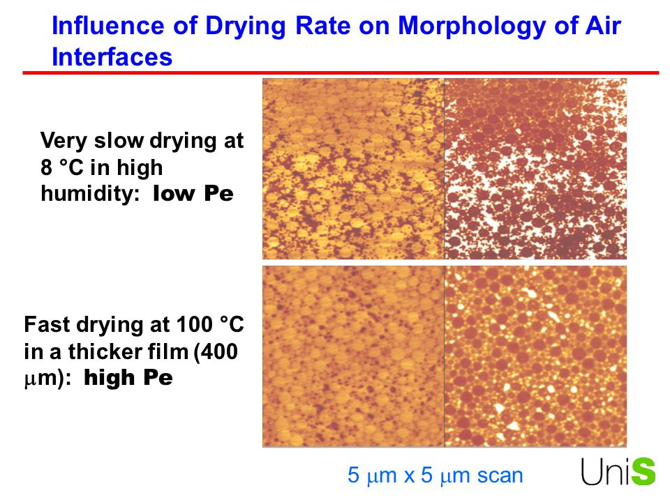 Influence of Drying Rate on Morphology of Air Interfaces