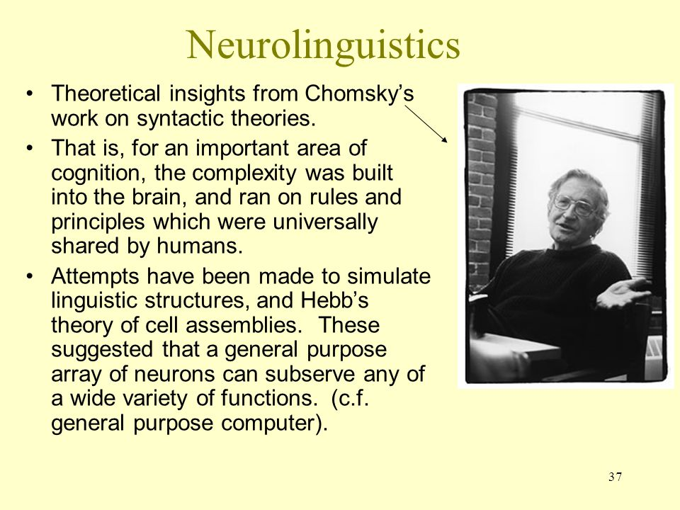 Neurolinguistics Theoretical insights from Chomsky's work on syntactic theories.