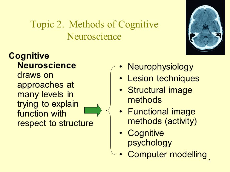 Topic 2. Methods of Cognitive Neuroscience