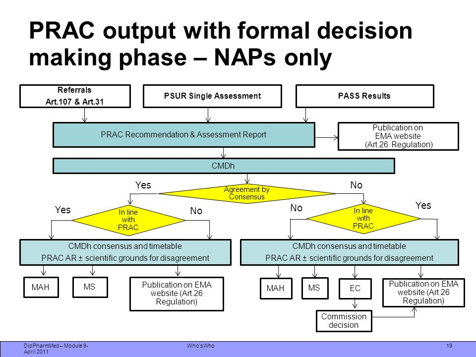 PRAC output with formal decision making phase – NAPs only