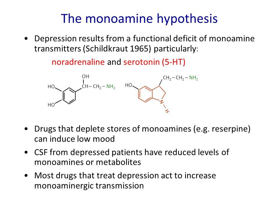 The monoamine hypothesis