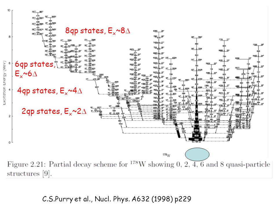 8qp states, Ex~8D 6qp states, Ex~6D 4qp states, Ex~4D