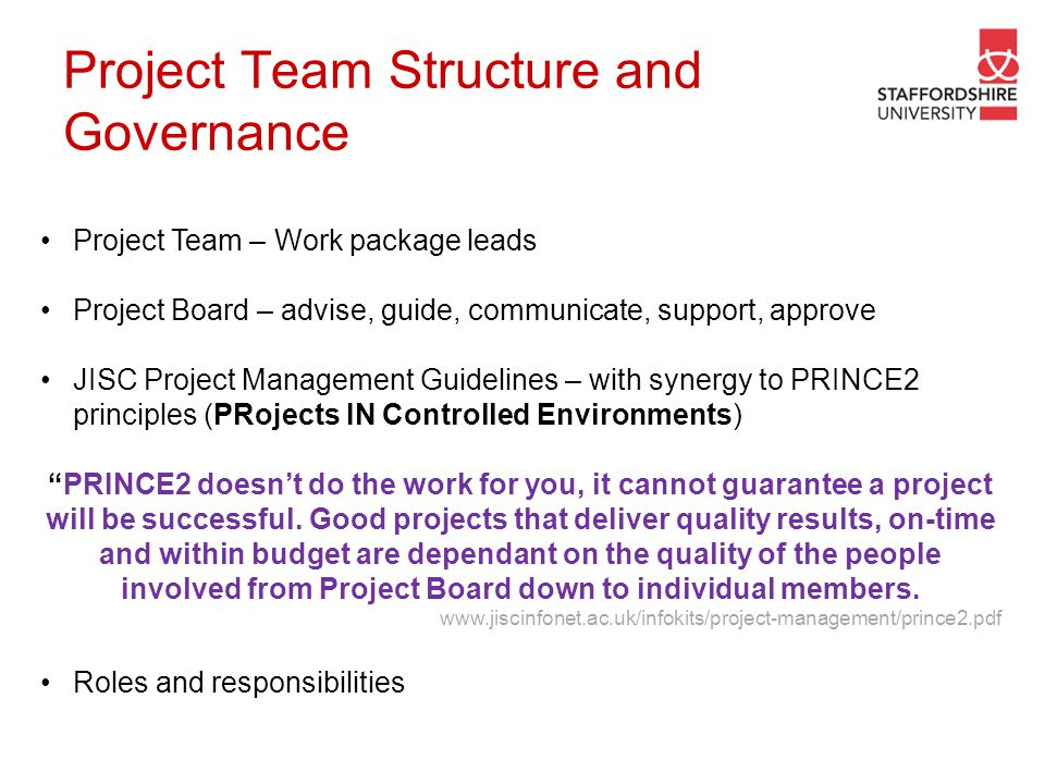 Project Team Structure and Governance