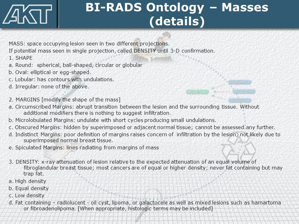 BI-RADS Ontology – Masses (details)