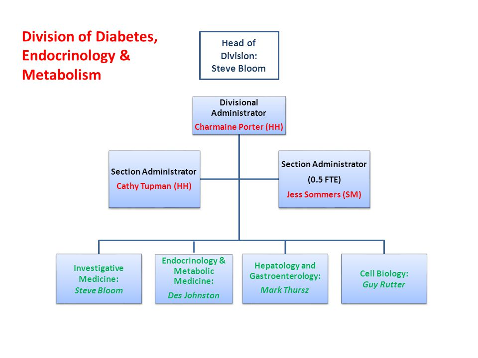 Division of Diabetes, Endocrinology & Metabolism