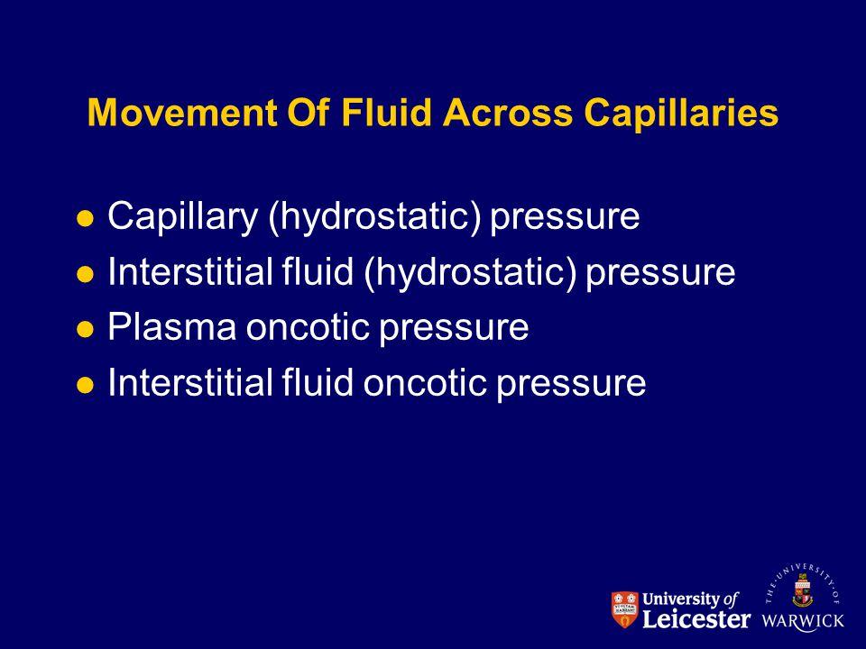 Movement Of Fluid Across Capillaries
