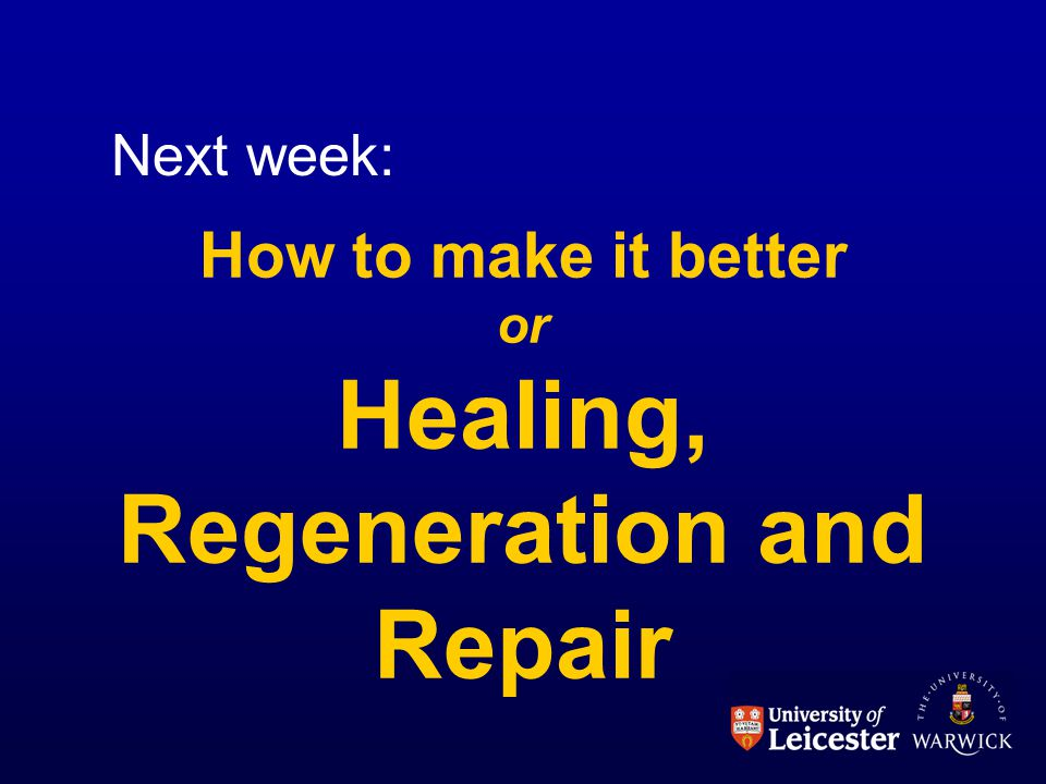 How to make it better or Healing, Regeneration and Repair