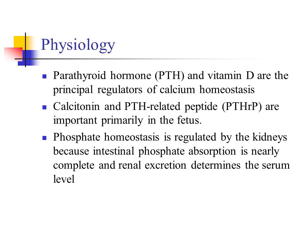 Physiology Parathyroid hormone (PTH) and vitamin D are the principal regulators of calcium homeostasis.