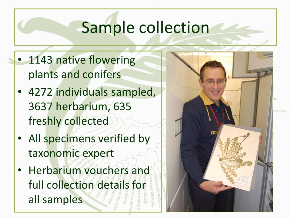Sample collection 1143 native flowering plants and conifers
