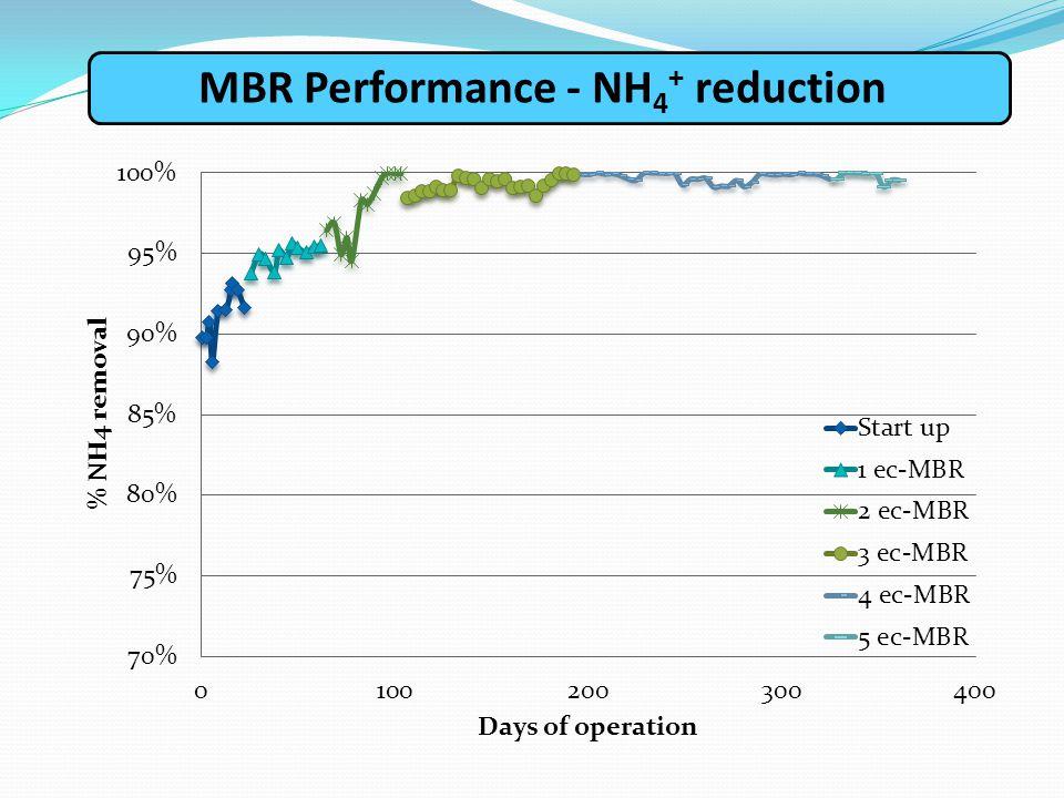 ΜΒR Performance - NH4+ reduction