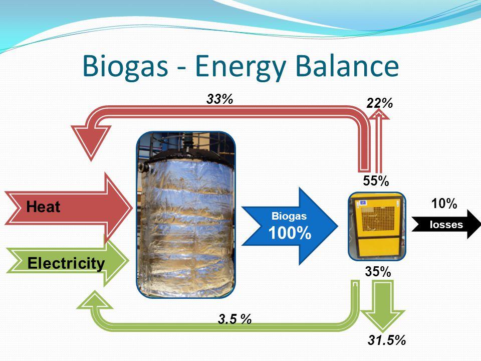 Biogas - Energy Balance