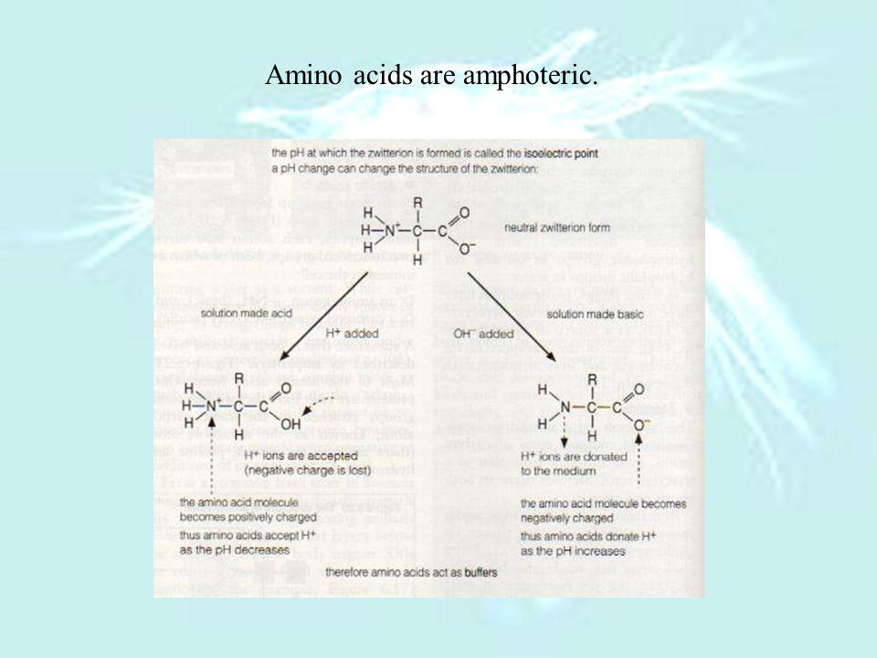 Amino acids are amphoteric.