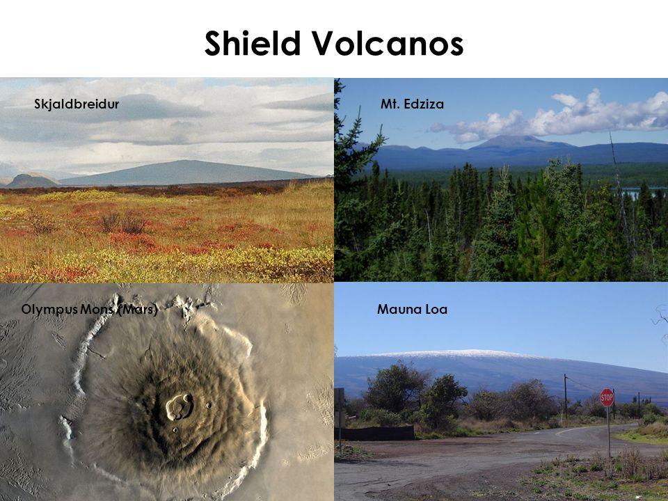 Shield Volcanos Skjaldbreidur Mt. Edziza Olympus Mons (Mars) Mauna Loa