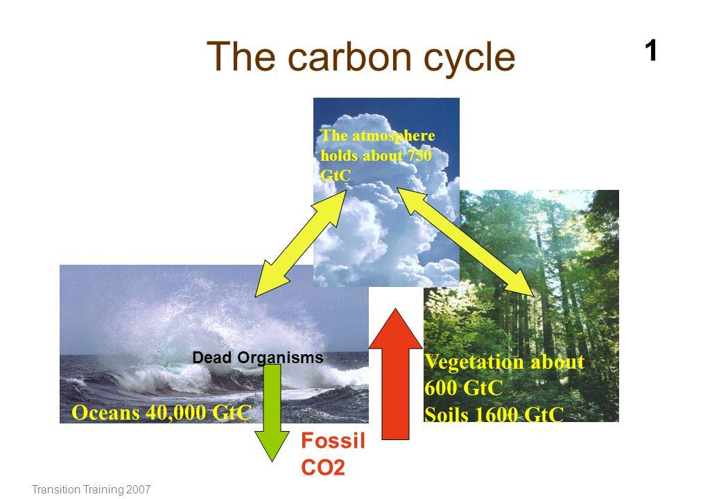 The carbon cycle 1 Vegetation about 600 GtC Soils 1600 GtC