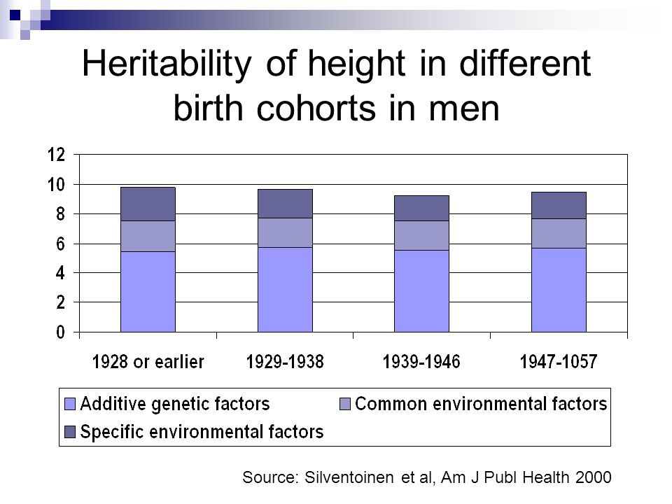 Heritability of height in different birth cohorts in men