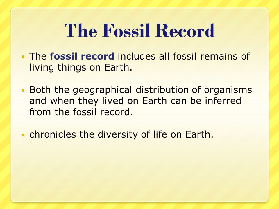 The Fossil Record The fossil record includes all fossil remains of living things on Earth.