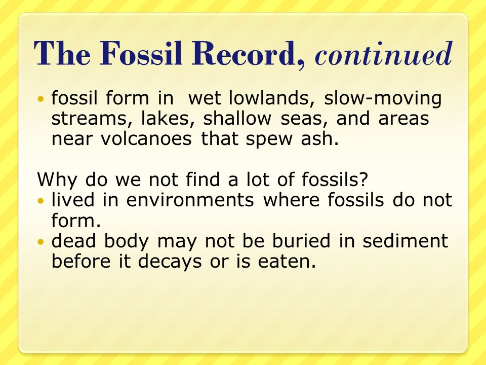 The Fossil Record, continued