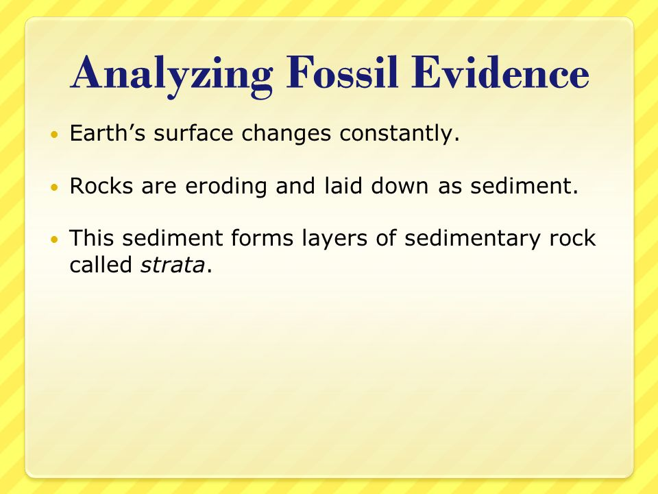Analyzing Fossil Evidence