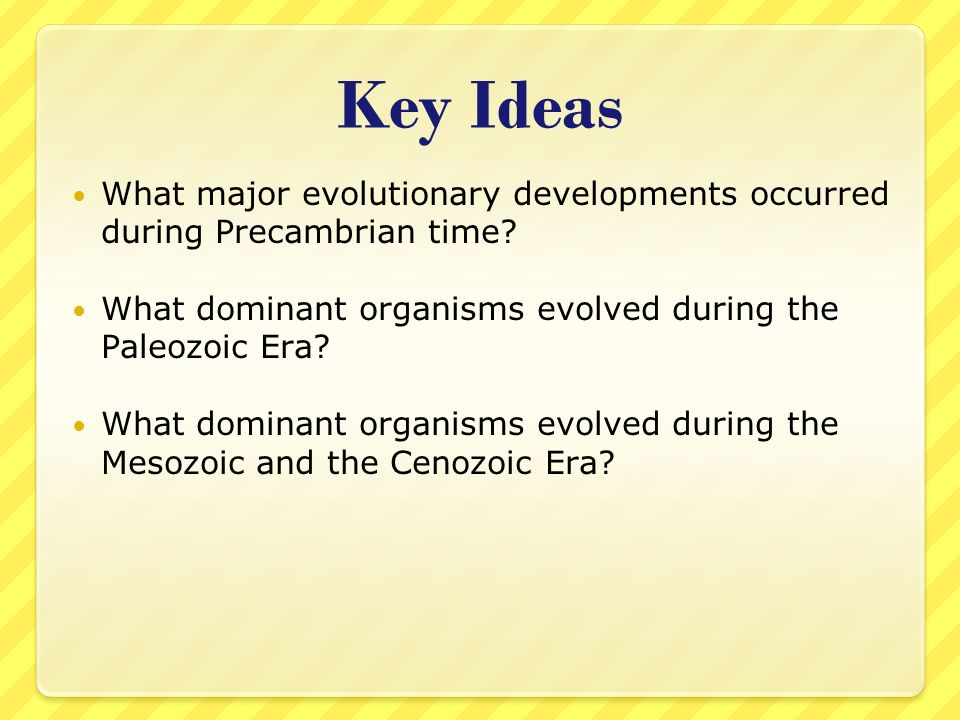 Key Ideas What major evolutionary developments occurred during Precambrian time What dominant organisms evolved during the Paleozoic Era