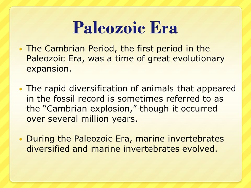 Paleozoic Era The Cambrian Period, the first period in the Paleozoic Era, was a time of great evolutionary expansion.