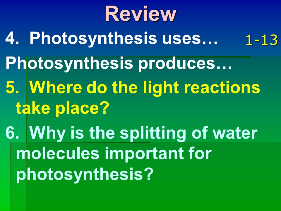 Review 4. Photosynthesis uses… Photosynthesis produces…