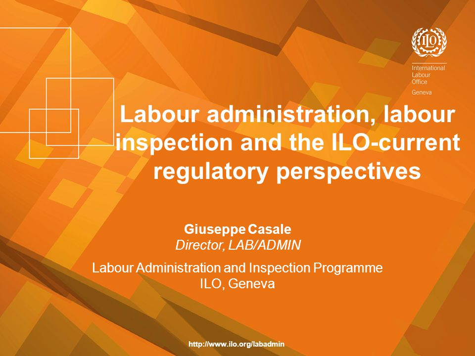 Labour Administration and Inspection Programme