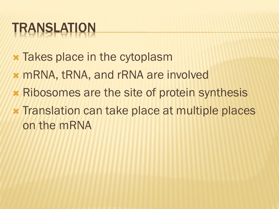 Translation Takes place in the cytoplasm