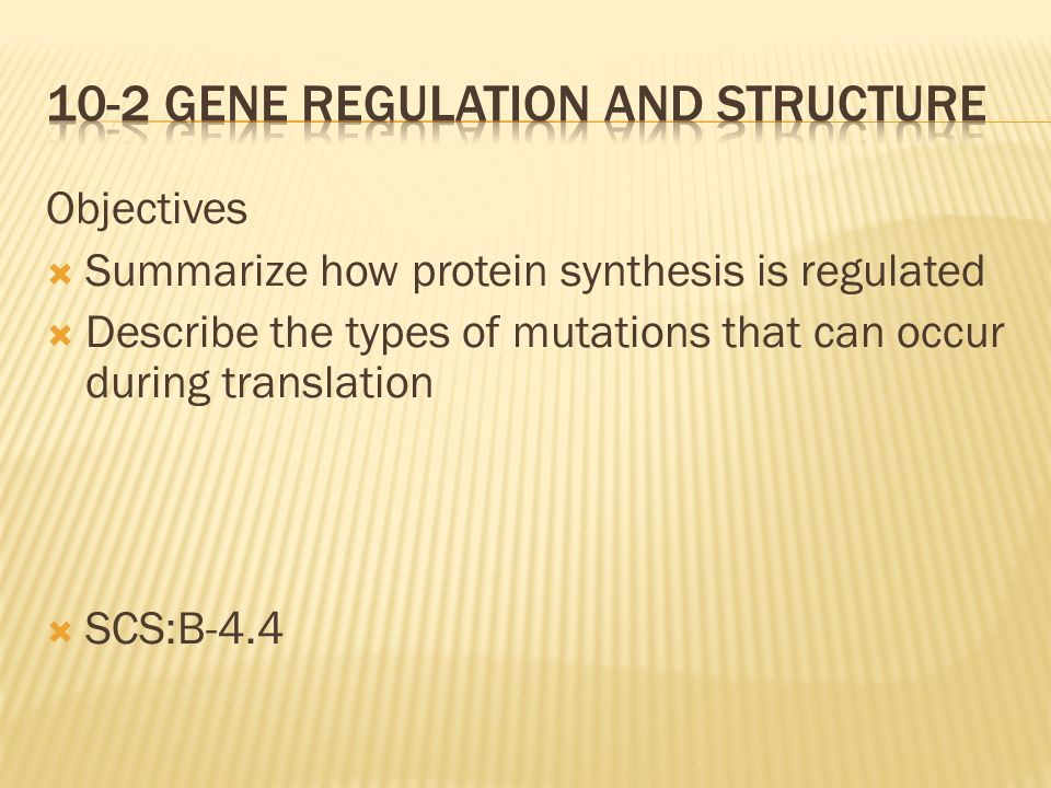 10-2 Gene regulation and Structure