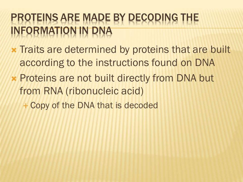Proteins are made by decoding the information in DNA