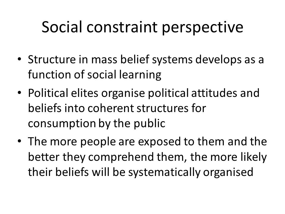 Social constraint perspective
