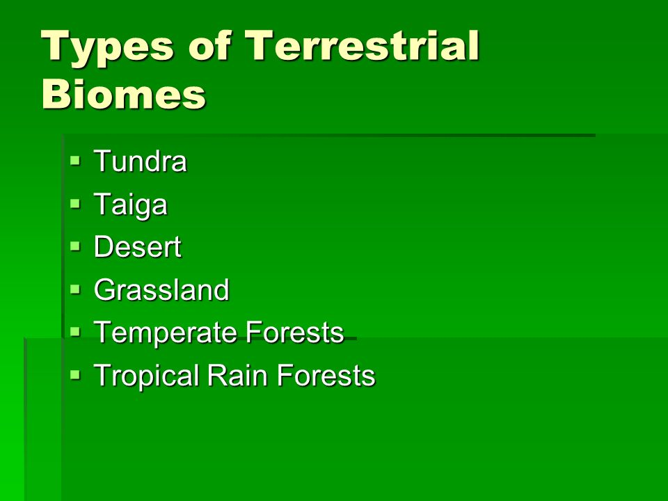 Types of Terrestrial Biomes