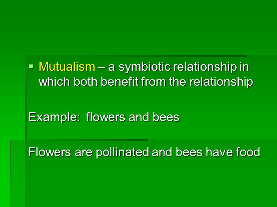 Mutualism – a symbiotic relationship in which both benefit from the relationship