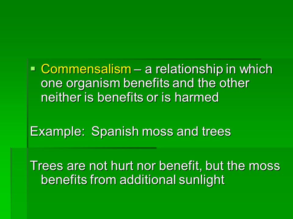 Commensalism – a relationship in which one organism benefits and the other neither is benefits or is harmed