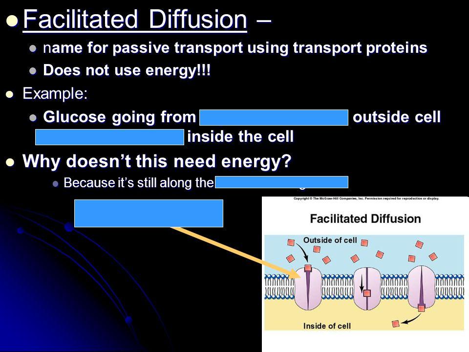Facilitated Diffusion –