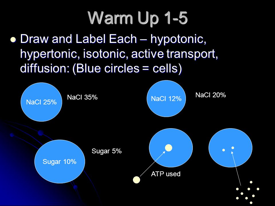 Warm Up 1-5 Draw and Label Each – hypotonic, hypertonic, isotonic, active transport, diffusion: (Blue circles = cells)