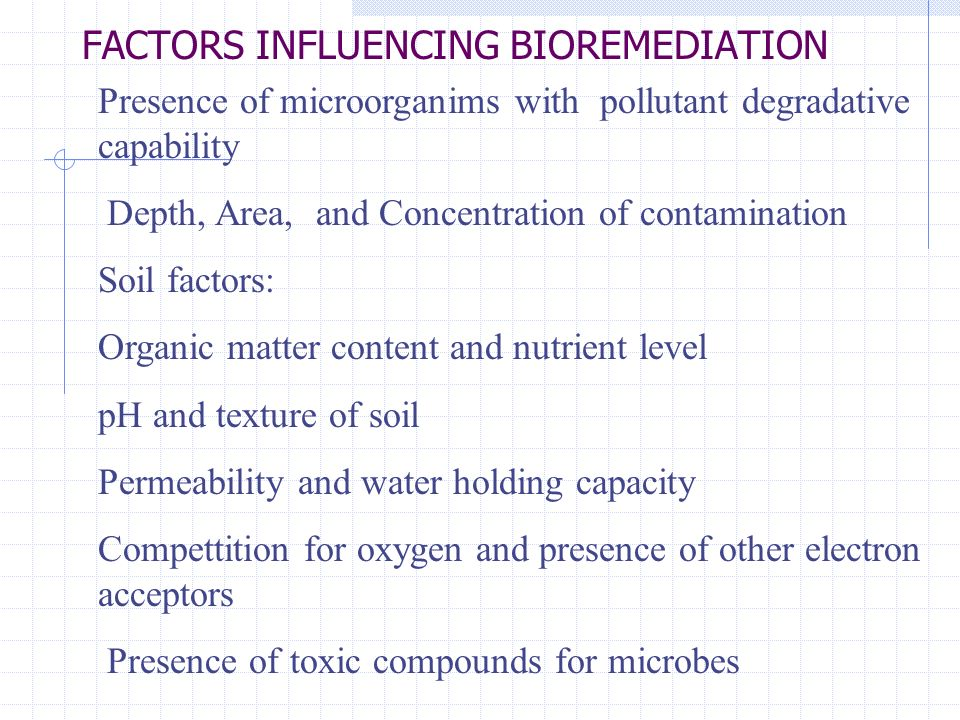 FACTORS INFLUENCING BIOREMEDIATION