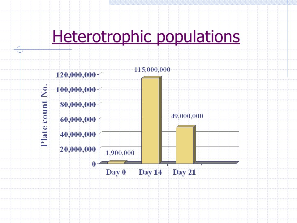 Heterotrophic populations