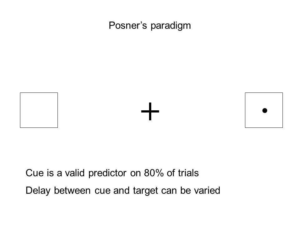 • Posner's paradigm Cue is a valid predictor on 80% of trials