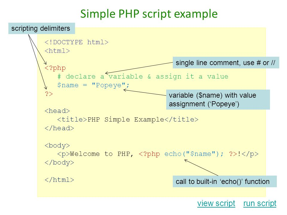 Simple PHP script example