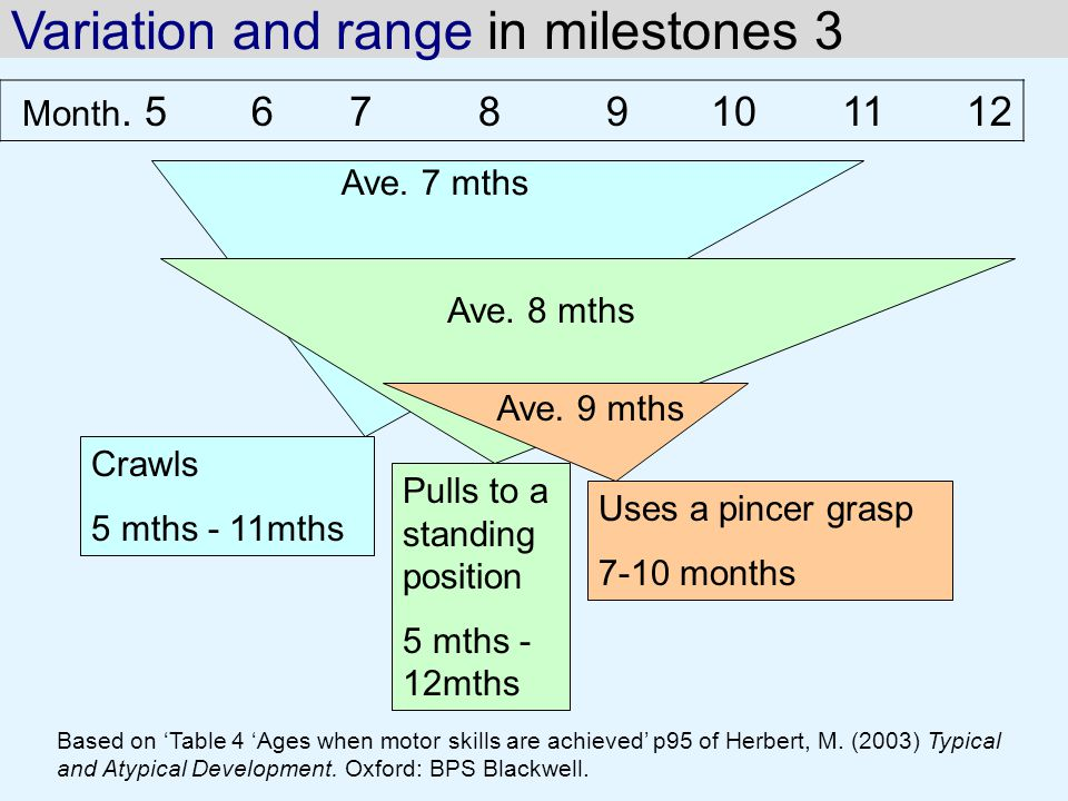 Variation and range in milestones 3
